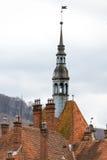 Toits pointus de château de Shenborn, Ukraine images libres de droits