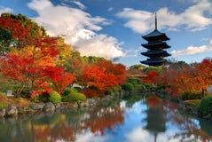 Toji Pagoda i Kyoto, Japan Arkivfoto