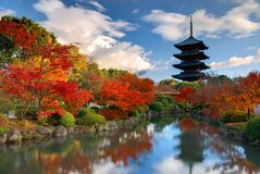 Toji Pagoda in Kyoto, Japan Stock Photo