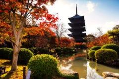 Toji tempel i höst, Kyoto Arkivbilder