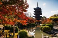 Toji tempel på hösten, Kyoto Royaltyfri Bild
