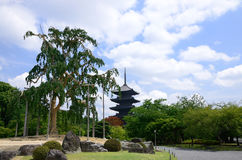 Toji-Temple's garden, Kyoto Japan. Stock Photo