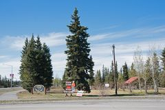 Tok Alaska Highway royalty free stock photo