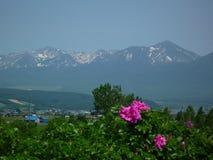 Tokachidake mountain range in Hokkaido. Panoramic view of Mt Tokachi range in Furano Royalty Free Stock Photography