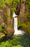 Tokatee Falls Oregon. Tokatee Falls bursting through a rock wall Royalty Free Stock Image