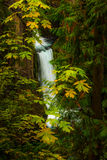 Toketee Falls Douglas County Oregon Royalty Free Stock Photography