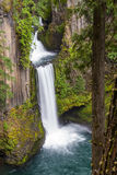 Toketee falls Oregon Royalty Free Stock Image