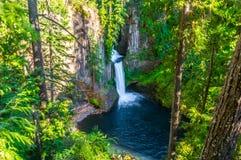Toketee vattenfall Arkivfoto