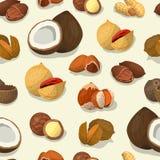 Tokig sömlös modell Muttermat av kasjun och Brasilien, hasselnöt och mandlar, valnöt, muskotnöt och annan Kokosnöttryck stock illustrationer