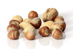 Tokigt, mandelar och valnötter - Nocciole, noci för mandorle e Arkivfoto