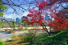 Tokio Stock Image