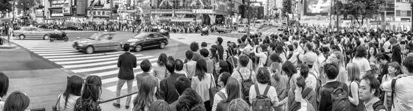 TOKIO, CZERWIEC - 1, 2016: Panoramiczny widok Shibuya skrzyżowanie z pe Fotografia Royalty Free