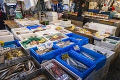 TOKIO - 11 DE MAYO: Mercado de pescados de Tsukiji de la visita de los compradores Imagenes de archivo