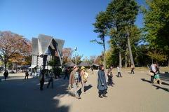 TOKIO - 22 DE NOVIEMBRE: Los visitantes gozan de la flor de cerezo (Sakura) en N Foto de archivo