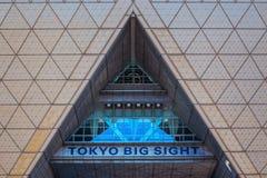 Tokio Duży widok w Odaiba, Tokio, Japonia Fotografia Royalty Free