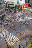 TOKIO, JAPÓN 28 DE JUNIO - 2017: Opinión superior la muchedumbre de gente que cruza en la calle de Shibuya, uno de los pasos de p Fotos de archivo libres de regalías