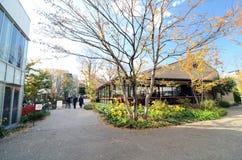 Tokio, Japón - 28 de noviembre de 2013: Pueblo japonés de la cafetería de la visita en el distrito de Daikanyama Fotos de archivo