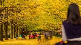 Tokio Japón en otoño almacen de video