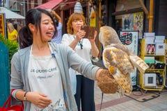 TOKIO, JAPONIA CZERWIEC 28, 2017 -: Piękna sowa pozuje nad kobieta nadgarstkiem w ulicie w Akihabara sowy kawiarni - sowy są bard Obraz Royalty Free