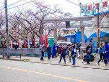 TOKIO JAPONIA, LIPIEC, - 02, 2017: Tłum ludzie w parku cieszy się widok w han parku podczas czereśniowego okwitnięcia sezonu wewn Zdjęcia Royalty Free