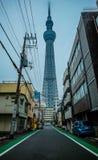 Tokio, Japonia Listopad 21, 2015: Widok Tokio nieba drzewo highes Fotografia Stock
