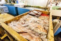Tokio Japonia, Stycze?, - 15, 2010: Wczesny poranek przy Tsukiji Rybim rynkiem Pudełko z świeżą rybą mieszkania architektury budy obrazy royalty free