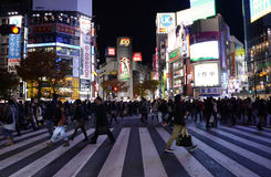 TOKIO, LISTOPAD - 28: Pedestrians przy słynnym skrzyżowaniem Shibuy Obrazy Royalty Free