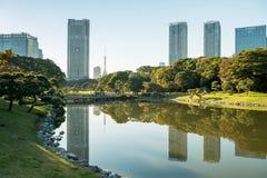 TOKIO LISTOPAD 28 2015: Widok Tokyo pejzaż miejski z parkiem, Japa Fotografia Stock