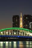 Tokio miasta widok Obraz Stock