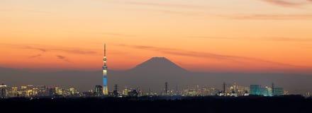Tokio miasta widok Fotografia Royalty Free