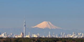 Tokio miasta widok Zdjęcie Stock