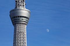 Tokio nieba drzewo Zdjęcie Stock