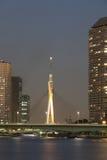 Tokio nieba drzewo Zdjęcia Royalty Free