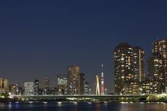 Tokio nieba drzewo Obraz Stock