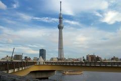 Tokio nieba drzewo fotografia royalty free