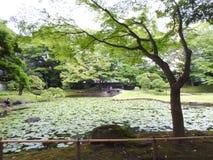 Tokio-Park stockfotos