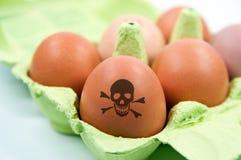 toksyczni kurczaków pudełkowaci jajka Obrazy Royalty Free
