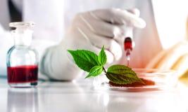 toksykologia obrazy stock