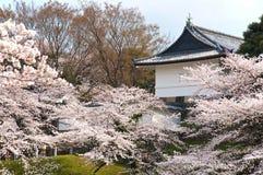 Tokyo Photos stock