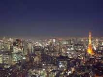 Tokyo from above Royalty Free Stock Photo