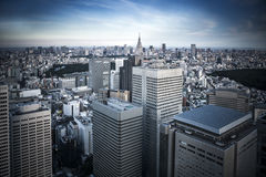 Tokyo from above Royalty Free Stock Images