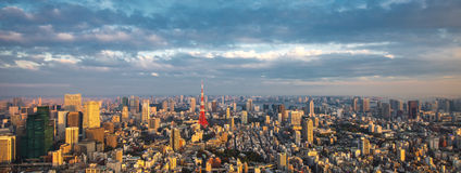 Tokyo aerial panoramic view Royalty Free Stock Photo