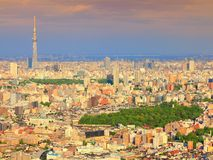 Tokyo aerial view Stock Photography