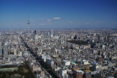 Tokyo from the air Royalty Free Stock Photo