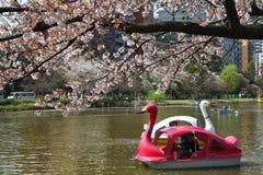 Ueno parkerar, Tokyo Arkivbilder