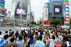 TOKYO - AUGUST 03: Shibuya in August 03 2013 - crowds of people crossing the center of Shibuya Royalty Free Stock Images