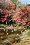 Tokyo autumn garden stock photo