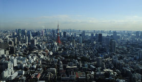 Tokyo background. The huge city of Tokyo Royalty Free Stock Photo