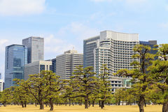Tokyo CBD. Central Business District in Tokyo viewed from imperial palace Royalty Free Stock Photography