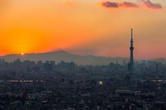 Tokyo Sunset. Tokyo city aerial view and mountain fuji Royalty Free Stock Photo